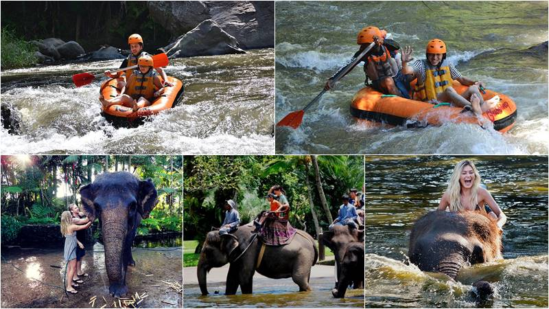Ayung River Tubing + Bathing Elephant Tour 1